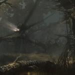 Accursed Woods
